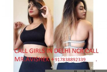 Delhi Escorts Service[ 78388|92339 ] Independent call girls in Janak puri Delhi | IN&Out call Cheap Rate Shot|Night | 24×7 Online Booking